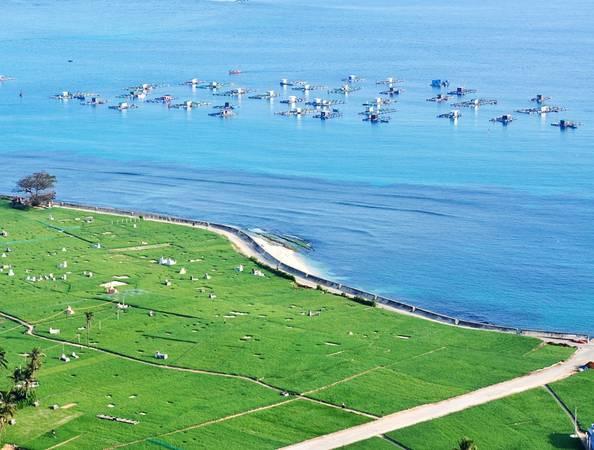 Cánh đồng hành tỏi nổi bật bên lồng, bè nuôi trồng thủy sản của ngư dân.