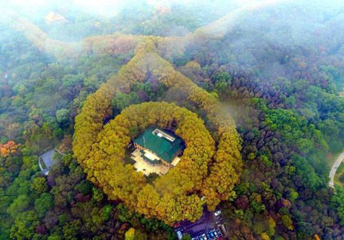 Lâu đài được coi là món quà tặng mà Tưởng Giới Thạch tặng vợ Tống Mỹ Linh. Ảnh: Amusing.