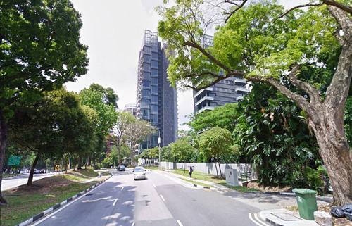 Paterson Hill, Singapore Con phố này có các khu mua sắm, cửa hàng với nhãn hiệu thời trang hàng đầu thế giới, phòng gym sang trọng, spa sành điệu. Giá trung bình cho mỗi mét vuông ở đây là 42.500 USD. Đại diện cho những cư dân nổi tiếng ở khu này là người đồng sáng lập Facebook Eduardo Saverin và cựu hoa hậu hoàn vũ Singapore Rachel Kum.