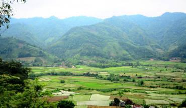 Phong c£nh b£n làng, Óng ruÙng nhìn të núi Ph°ãng Hoàng¢nh: H¢I D¯NG