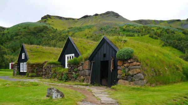 Những ngôi nhà gỗ phủ đầy cỏ xanh trên mái ở Renndolsetra - Ảnh: wp