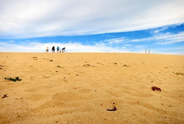 Đồi cát Nhơn Lý – địa điểm lý tưởng để trượt cát và dạo chơi, chụp ảnh.