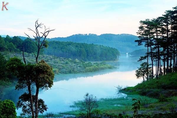 Hồ Tuyền Lâm: Là hồ nước ngọt rộng nhất Ðà Lạt, nằm cách trung tâm thành phố Đà Lạt 7 km và cách thác Datanla 2km. Đây được xem là khu phức hợp tập trung nhiều cảnh quan đẹp và dịch vụ du lịch phong phú. Hồ có nhiều ốc đảo nhỏ và được bao bọc bởi khu rừng thông. Các bạn có thể đi cáp treo qua đồi Rôbin, ngắm cảnh rừng thông, hồ Tuyền Lâm, núi Phượng Hoàng từ trên cao.