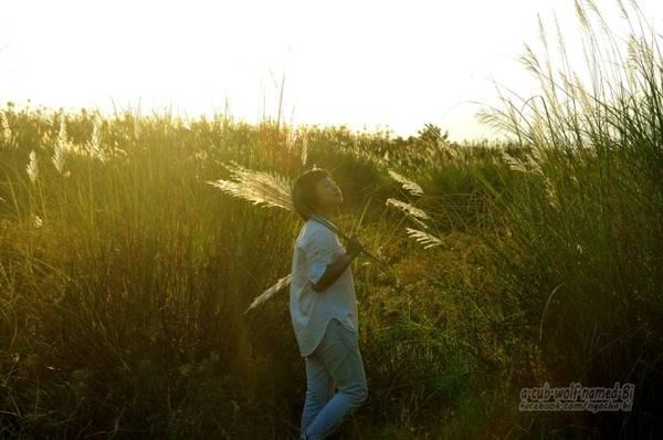 Nơi đây trở thành điểm chụp ảnh yêu thích của nhiều bạn trẻ - Ảnh: Phong Linh