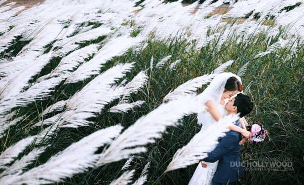 Nhiều đôi uyên ương chọn nơi đây để chụp bộ ảnh cưới tuyệt đẹp - Ảnh: Đức Hollywood
