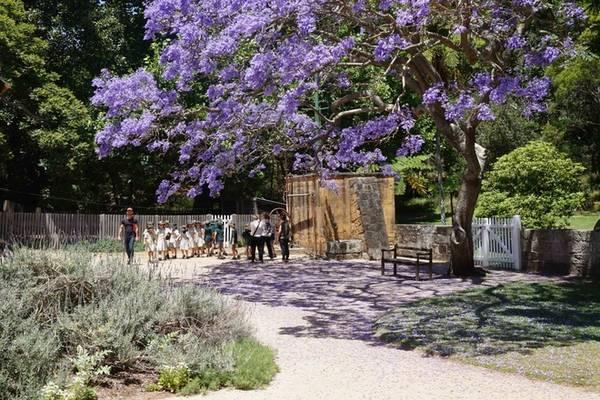 Một nhóm học sinh đến tham quan Vaucluse House. Ảnh: Sydneylivingmuseums