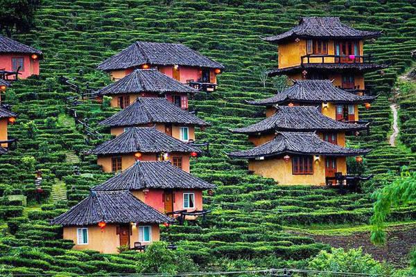Ban Rak Thai là tên gọi của khu làng người Hoa sinh sống tại vùng núi phía bắc của Thái Lan. Khu làng này nằm trên độ cao 1.776 m so với mực nước biển.