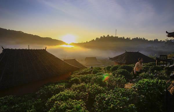 Tại đây có hơn 1.000 người Hoa sinh sống, chủ yếu bằng nghề trồng và chế biến chè.