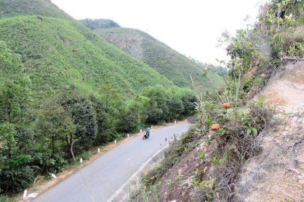Càng lên gần Tây Giang, cung đồi đèo núi càng thêm gập ghềnh, khúc khuỷu - Ảnh: Thanh Ly