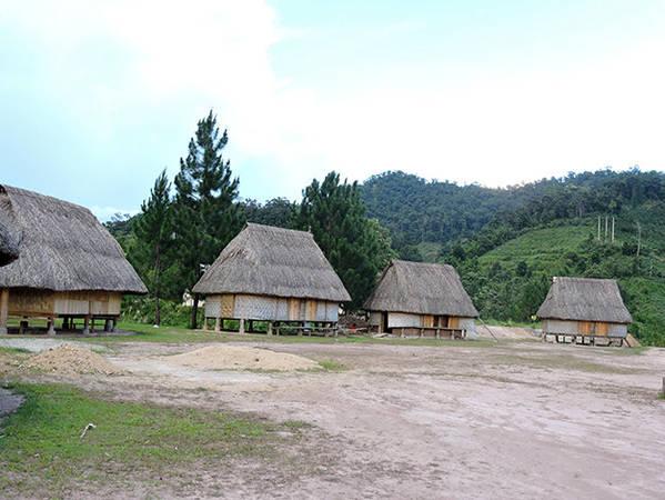 Những ngôi nhà sàn Cơ Tu nằm khuất giữa màu rừng - Ảnh: Thanh Ly