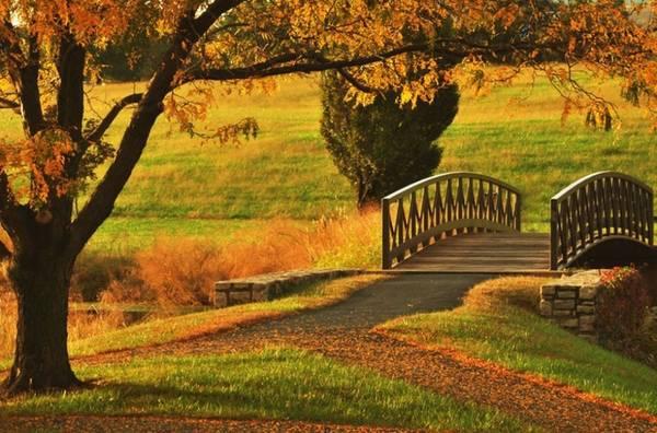 Parkville, Missouri Nằm nép mình bên thành phố Kansas, thị trấn Parkville nổi tiếng vì khung cảnh cổ kính, mang dấu ấn xa xưa. Nhờ đó, nơi đây là sự lựa chọn cho du khách muốn cảm nhận vẻ đẹp mùa thu nước Mỹ những năm cuối thế kỉ 19.