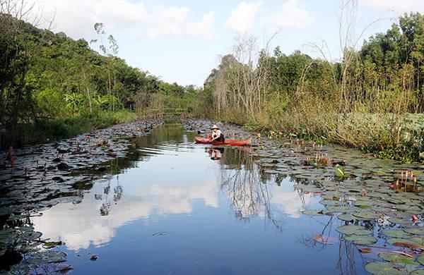 Quang cảnh một nhánh suối Yến - Ảnh: Bá Quỳnh