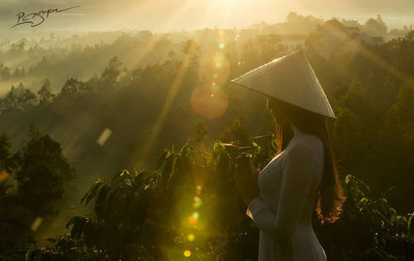 Tác phẩm Visions of Vietnam (Viễn cảnh Việt Nam).