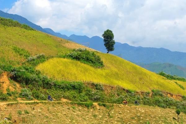 Nằm cách trung tâm thành phố Sơn La 70 km về hướng Đông, một mặt giáp với tỉnh Yên Bái, Chiềng Ân là xã thuộc huyện Mường La với diện tích 85,33 km2, có mật độ dân số thưa thớt.