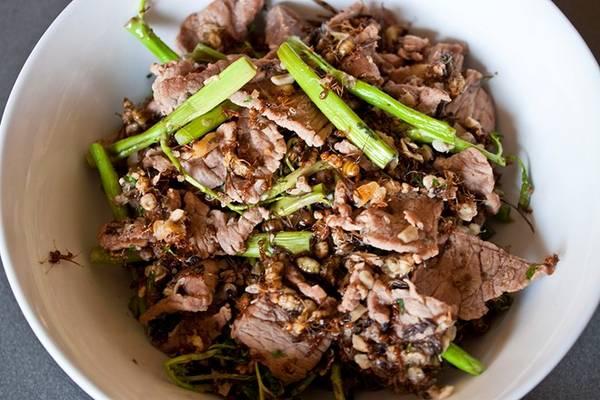 Kiến đỏ xào bò: Món ăn nghe có vẻ rất lạ này được làm từ kiến đủ kích cỡ xào với gừng, ớt, sả, tỏi, hẹ tây và bò thái mỏng. Kiến đỏ xào bò thường được ăn cùng cơm. Ảnh: Abejero.