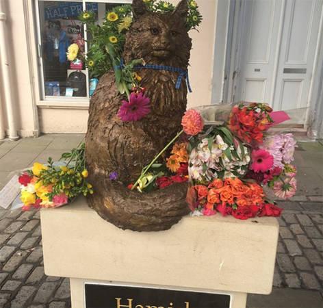 Đài tưởng niệm con mèo được yêu thích ở St. Andrews. Hamish McHamish là con mèo Ginger sống ở St. Andrews đến khi nó chết năm 2014. Nó sống lang thang quanh thị trấn và có rất nhiều người theo dõi trên các phương tiện mạng xã hội.