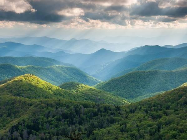 North Carolina: Khu vực dọc đường Blue Ridge qua cao nguyên Appalachia là một trong những vùng có hệ sinh thái đa dạng nhất thế giới, với hơn 1.600 loài thực vật, 54 loài động vật có vú và 159 loài chim.