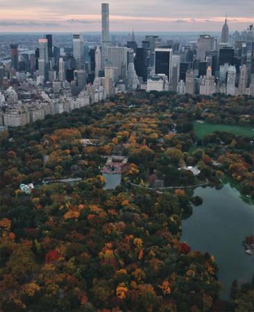 Công viên Trung tâm, New York, Mỹ.