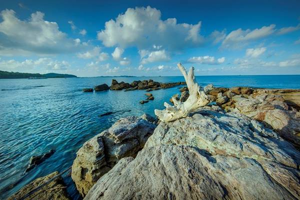 Mũi Ông Đội còn là một điểm câu cá, lặn ngắm san hô lý tưởng tại Phú Quốc.