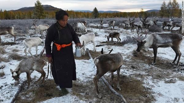 Sinh sống ở vùng Siberia và tỉnh Khovsgol cực Nam của Mông Cổ, người Dukha phụ thuộc vào tuần lộc trên nhiều phương diện của cuộc sống, từ sinh tồn, văn hóa tới tâm linh. Họ cũng là bộ tộc chăn tuần lộc duy nhất ở Mông Cổ.