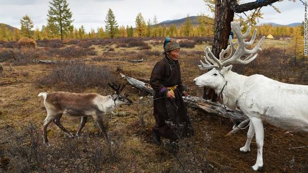 Khu vực săn bắn của người Dukha trở thành công viên quốc gia vào năm 2011, khiến người của bộ tộc gặp nhiều khó khăn hơn.
