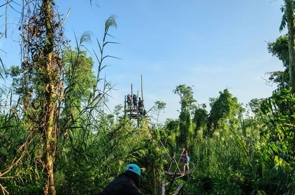 Sau hơn 200 m bám víu run rẩy trên cầu khỉ, Trảng Chim hiện ra trước mắt.