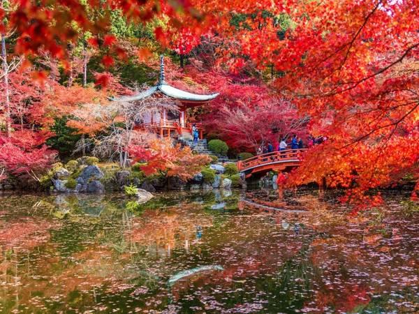 Kyoto, Nhật Bản: Đây là năm thứ 2 liên tục Kyoto được vinh danh là thành phố tuyệt vời nhất thế giới của Travel + Leisure, dựa theo bình chọn của độc giả. Thành phố này mang đậm dấu ấn lịch sử, với nhiều đền miếu cổ, các khu chợ, công viên xinh đẹp.