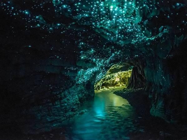 Hang đom đóm, Waitomo, New Zealand: Những chiếc hang ở đây được hàng nghìn con đom đóm thắp sáng về đêm, khiến cảnh tượng lung linh như một dải ngân hà.