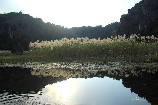 Mặt nước sáng lấp lánh ánh vàng.