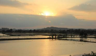 Hoang-hon-tinh-lang-tren-dam-Van-Long-ivivu-11