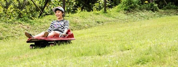 Những trò chơi mạo hiểm, khám phá hấp dẫn du khách tại khu sinh thái rừng Madagui.