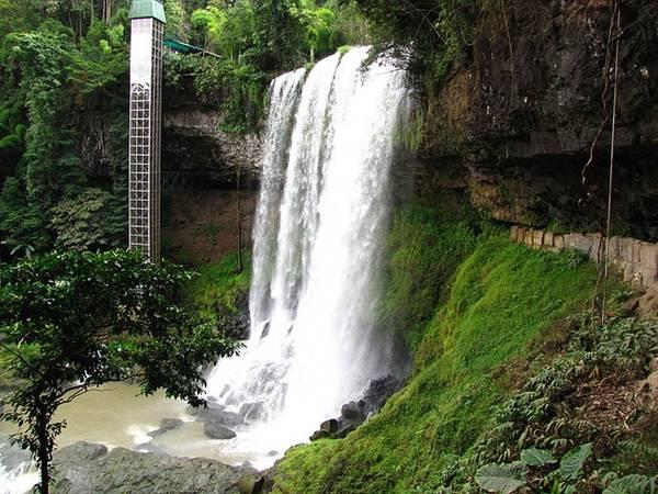 Khu du lịch sinh thái Dambri không chỉ làm đắm lòng du khách với những đồi chè, nương dâu xanh ngát mà còn bởi chính khí hậu ôn hòa quanh năm và những thác nước hùng vĩ. Thác Dambri, thác cao nhất trong hệ thống các thác nước ở Lâm Đồng có chiều cao 90 m. Sở hữu vẻ đẹp hùng vĩ đầy quyến rũ, Dambri từ lâu đã là điểm đến quen thuộc của du khách khắp mọi nơi.