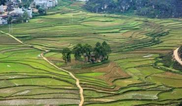 Noi-ngam-canh-ly-tuong-nhat-cao-nguyen-da-Dong-Van-ivivu-12