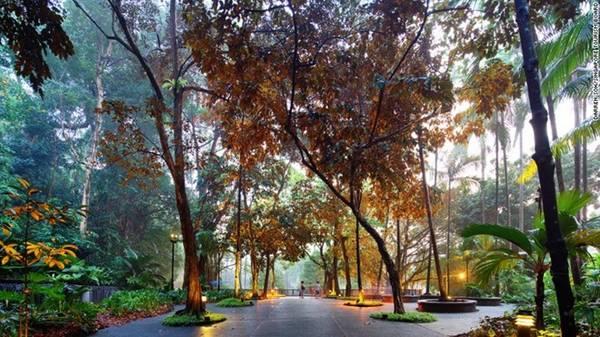 Vườn thực vật Singapore là điểm tham quan đầu tiên ở Singapore được UNESCO công nhận là Di sản thế giới, và là khu vườn đầu tiên ở châu Á nhận được danh hiệu này.