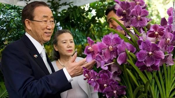 Tổng thư ký Liên Hợp Quốc, ông Ban Ki-moon và vợ, bà Yoo Soon-taek, trước loài phong lan được đặt theo tên họ.