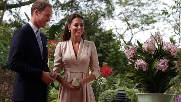 Hoàng tử William và Công nương Catherine đã tới thăm Vườn thực vật vào năm 2012 và được chào đón với một loại phong lan được đặt theo tên họ.