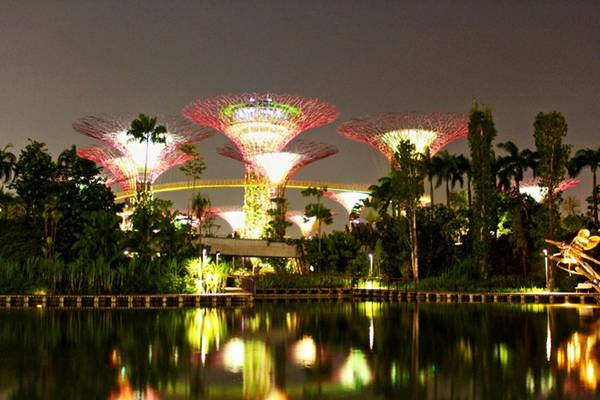 Những siêu cây năng lượng mặt trời ở Gardens by the Bay.