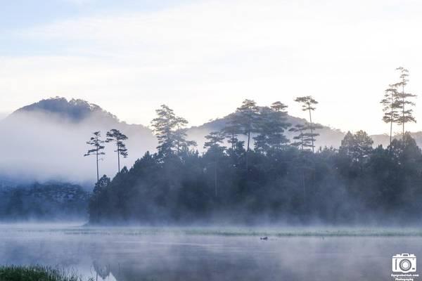 Mây, nước, rừng, núi hòa quyện, tạo nên một không gian yên bình.