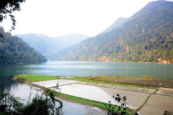 Khi nước hồ cạn, người dân tận dụng canh tác trên những khu ruộng