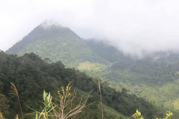 Núi Cà Đam là cách gọi của người Kor, còn người Kinh gọi là núi Vân Phong - Ảnh: V.Q.Cầu