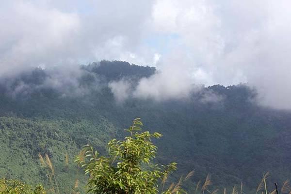 Chỉ một cơn mưa rừng ập đến núi đã trở thành một màng trắng xốp như bông - Ảnh: V.Q.Cầu
