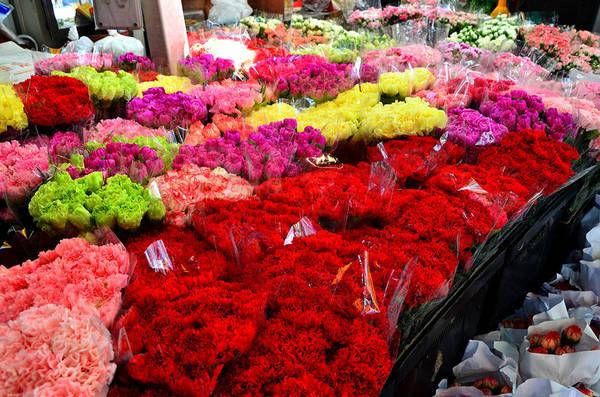 Hoa ở đây rất đa dạng nhưng phổ biến nhất là lan, cúc, hồng... Tất cả đều có mùi thơm dịu nhẹ. Nhờ vậy khi đi bộ, du khách có thể cảm nhận hương hoa thoang thoảng. Ảnh:nextstopbangkok.com
