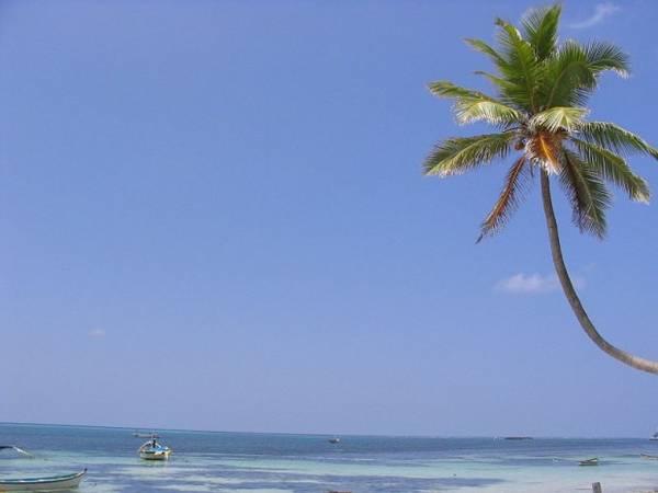 11. Ấn Độ có rất nhiều bãi biển tuyệt đẹp và một trong số đó phải kể đến những bãi biển ở Kavaratti, Lakshadweep. Ảnh: Thejas