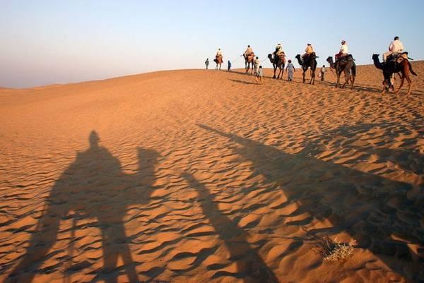 4. Cưỡi lạc đà băng qua sa mạc ở Rajasthan sẽ là một trải nghiệm khó quên đối với du khách. Ảnh: Flicka