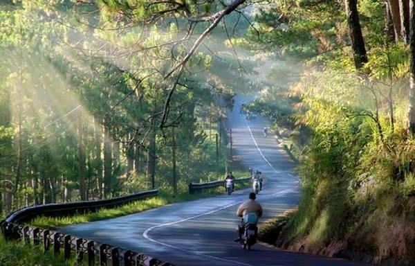 Đoạn đường đẹp như tranh vẽ của đèo Prenn. Ảnh: caonguyendatravel.com.