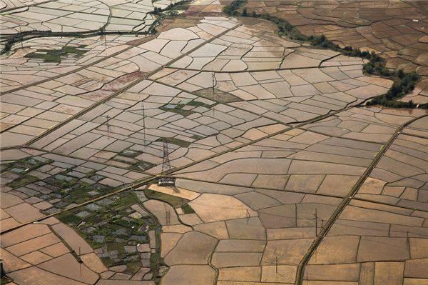 Những cánh đồng lúa ở Mai Châu mùa nước đổ.