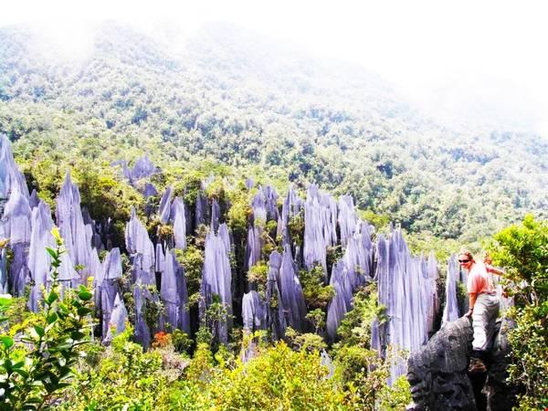Unesco đã công nhận Vườn quốc gia Gunung Mulu của Malaysia là Di sản thiên nhiên thế giới năm 2000. Ảnh: wordpress.