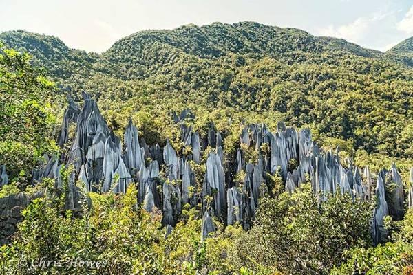 Vườn quốc gia Gunung Mulu nổi bật với ba ngọn núi hùng vĩ, Gunung Mulu cao 2.376m, Gunung Api cao 1.750m và ngọn Gunung Benarat cao 1.585m. Ảnh: mulupark.