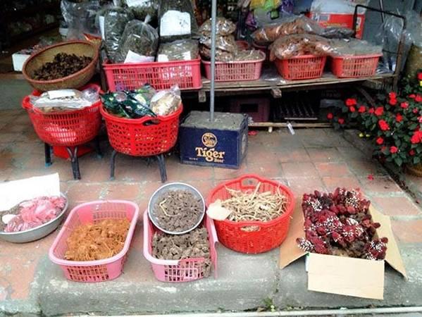 Nấm ngọc cẩu được bày bán nơi phố chợ - Ảnh: H.L.Đ.Hợp