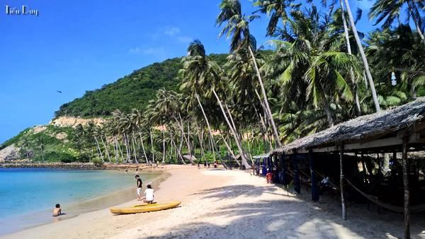Hàng dừa xanh mát chạy dọc bãi Mến. Ở đây ngoài cát trắng, biển xanh trong vắt còn có một rặng san hô đá ngầm vô cùng phong phú với nhiều loài cá đủ màu sắc.